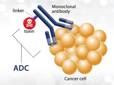 Antibody-Drug Conjugates for Cancer Treatment