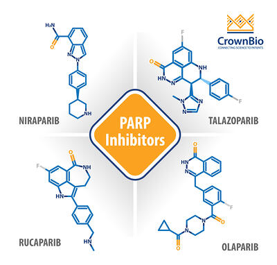 4 approved parp inhibitors 2020 niraparib, talazoparib, rucaparib, olaparib