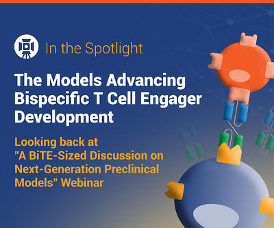 Preclinical Models for Bispecific T Cell Engager Development