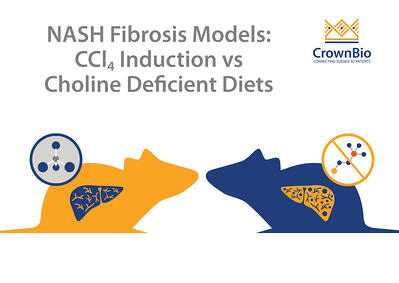 comparison of carbon tetrachloride induction and choline deficient diet models of NASH fibrosis
