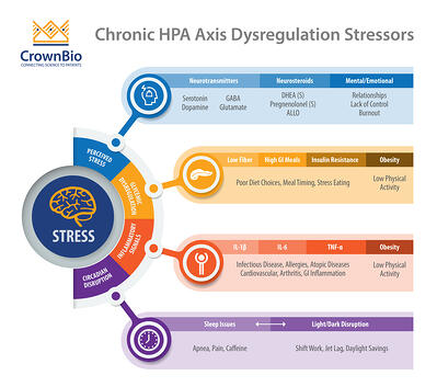 the four classes of chronic HPA axis dysregulation stressors, including circadian rhythm disruption