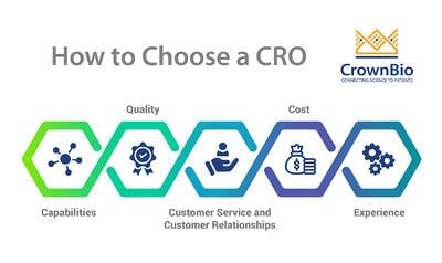 How to choose a contract research organization, main CRO features including experience, quality, and capabilities