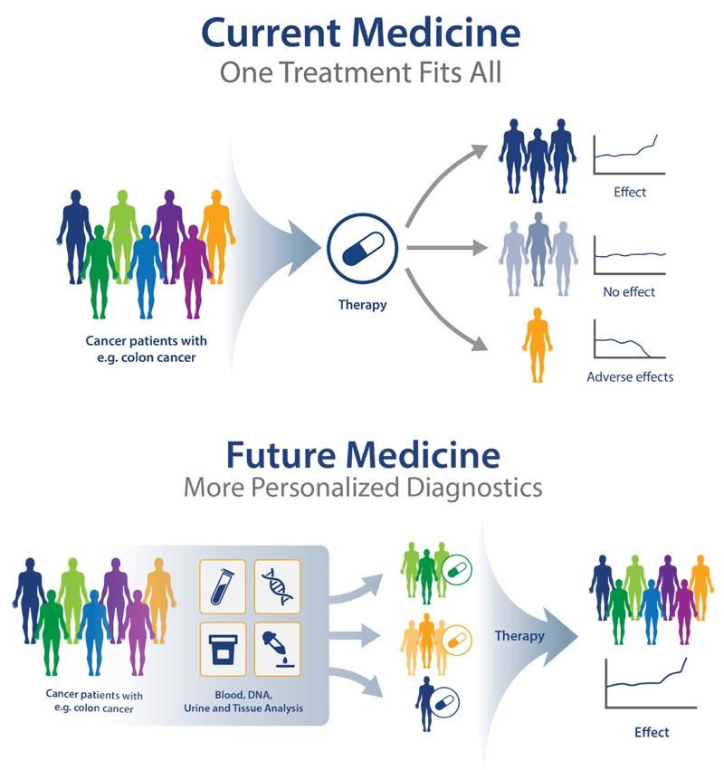 pdx models in preclinical research, personalized medicine, predictive human surrogate trials, precision medicine