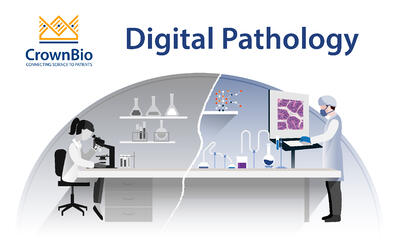 Explore digital pathology, and how it's being used for biomarker discovery particularly within immuno-oncology