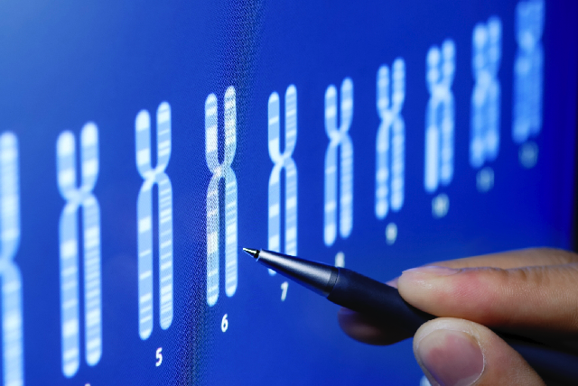 Whole Genome Sequencing Explains Mechanisms Of Resistance Of High Grade Serous Ovarian Cancer