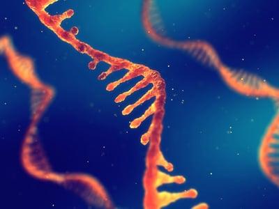RNA strand for use in transcriptomic technologies