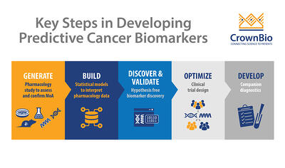 key steps showing how to develop predictive cancer biomarkers