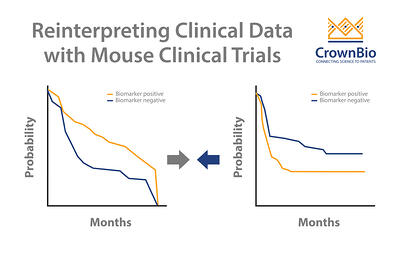 how to use mouse clinical trial advanced analysis to reinterpret clinical results