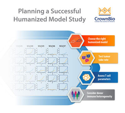 Factors to consider when planning immuno-oncology agent efficacy studies in humanized mice