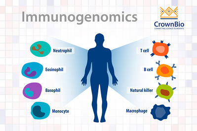 immunogenomics in oncology drug discovery