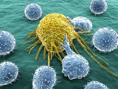 2017 Review: The Continued Rise of Immunotherapy