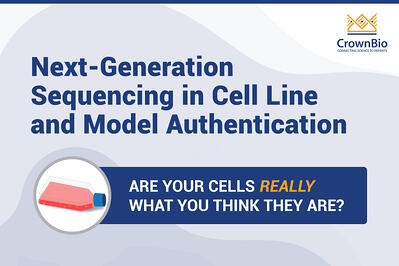 Barcode Deep NGS Sequencing for Cell Line and Model Authentication