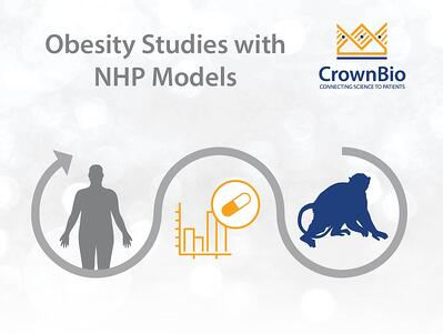 infographic displaying NHP models as human-disease relevant for anti-obesity agent testing