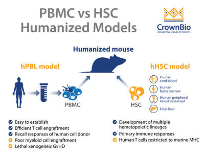 differences between PBMC and HSC humanized mouse models