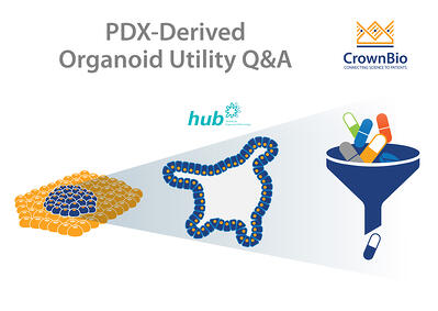 Q&A on utilities of PDX-Derived Organoids, PDXO
