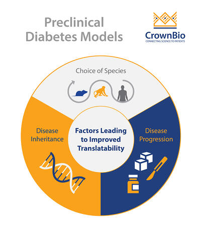 Infographic of factors determining translatability in preclinical models of type 2 diabetes
