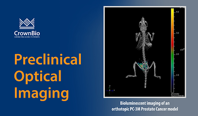 in vivo bioluminescent imaging of orthotopic prostate cancer PC-3M tumors