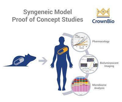 examples of proof of concept studies (poc studies) performed with syngeneic tumor models