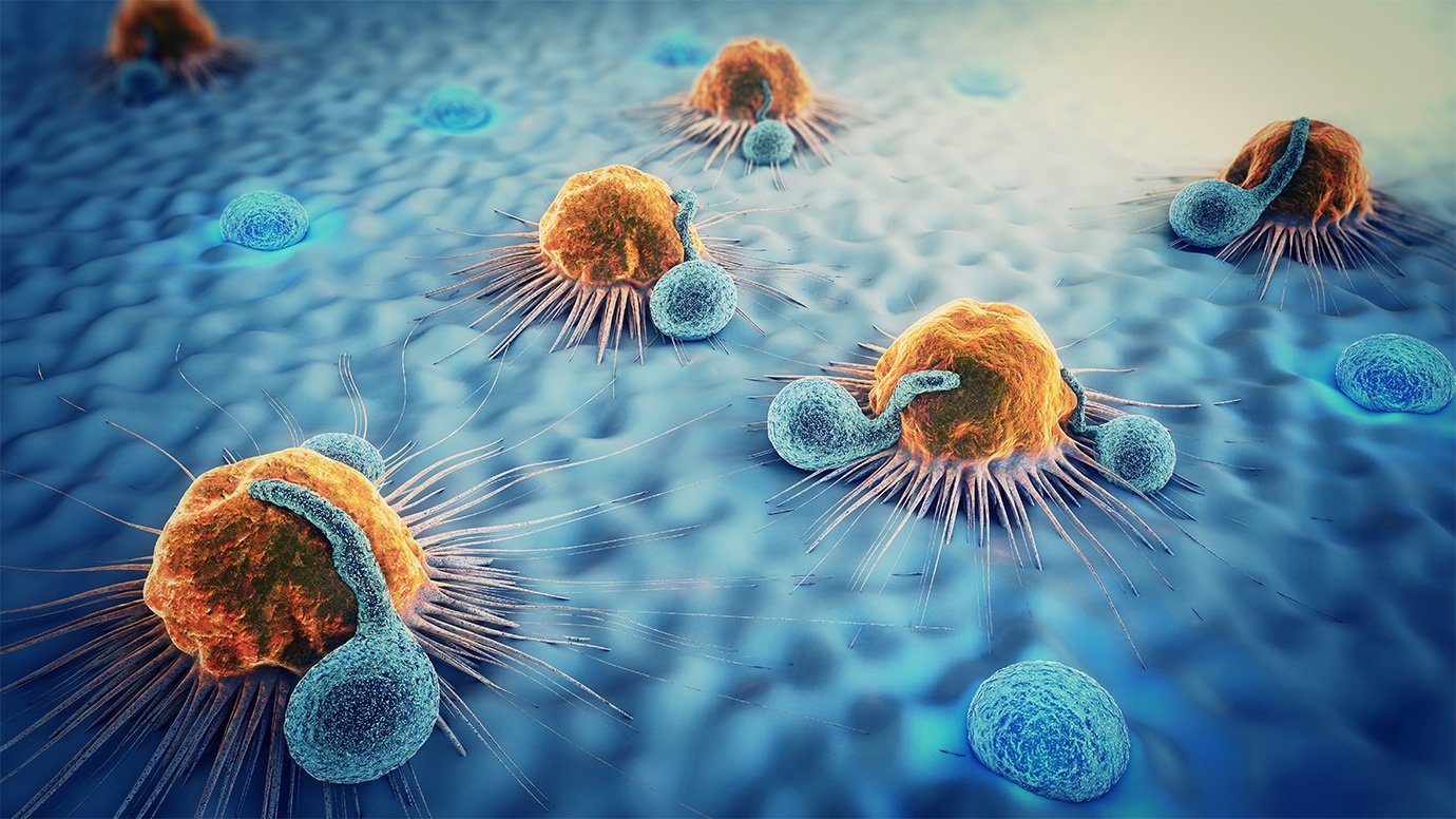 Targeting Myeloid Derived Suppressor Cells in Immuno-Oncology