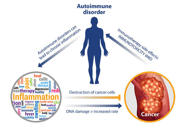 The Connection Between Inflammation and Cancer