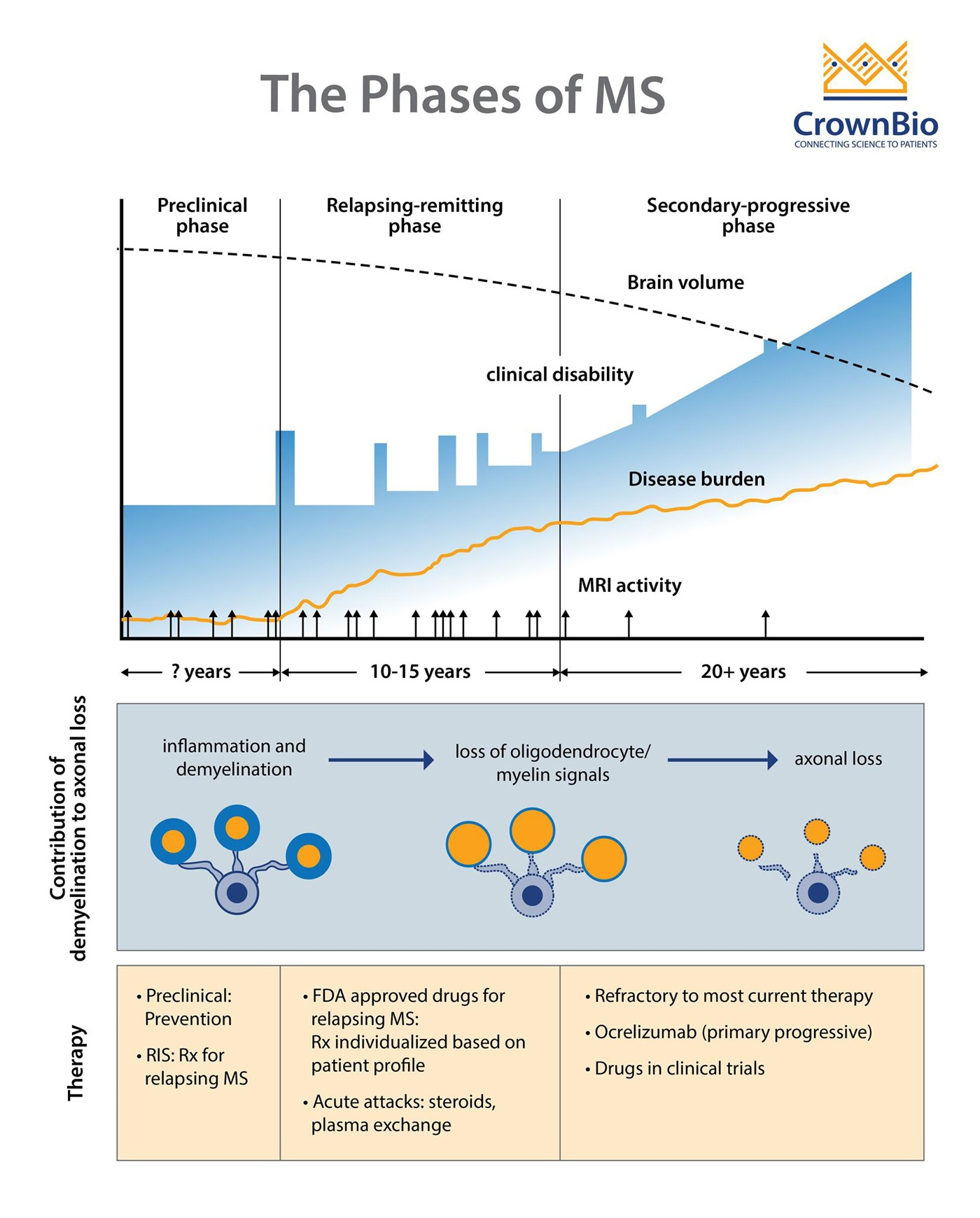 phases of multiple sclerosis MS, progressive demyelination in MS, treatments for multiple sclerosis MS stages