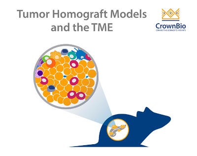 The tumor microenvironment in orthotopic tumor homograft models