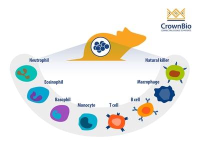 Tumor Infiltrating Immune Cells