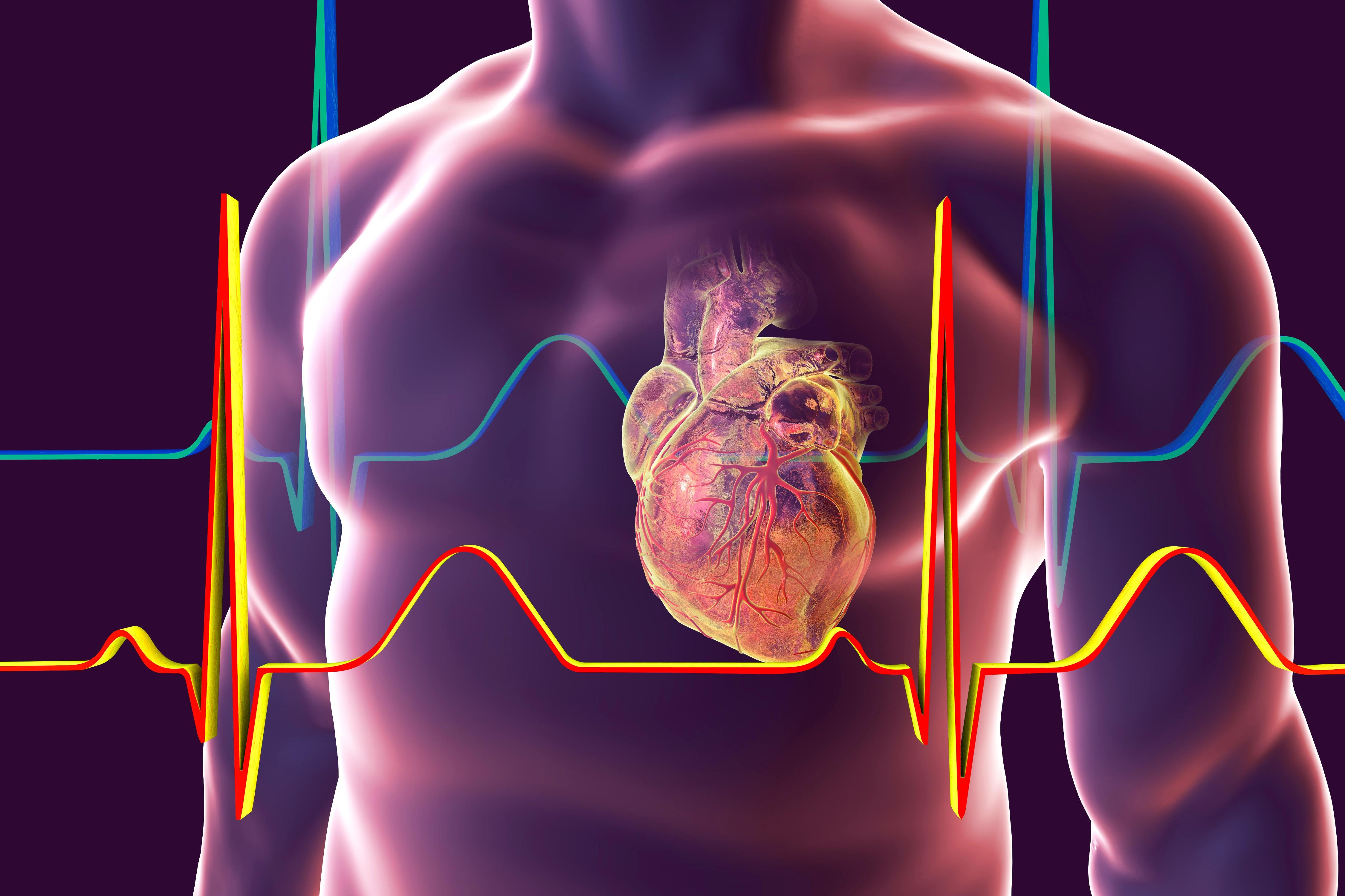Cardiomyopathy Treatment in Rodent Models – ADA 2018