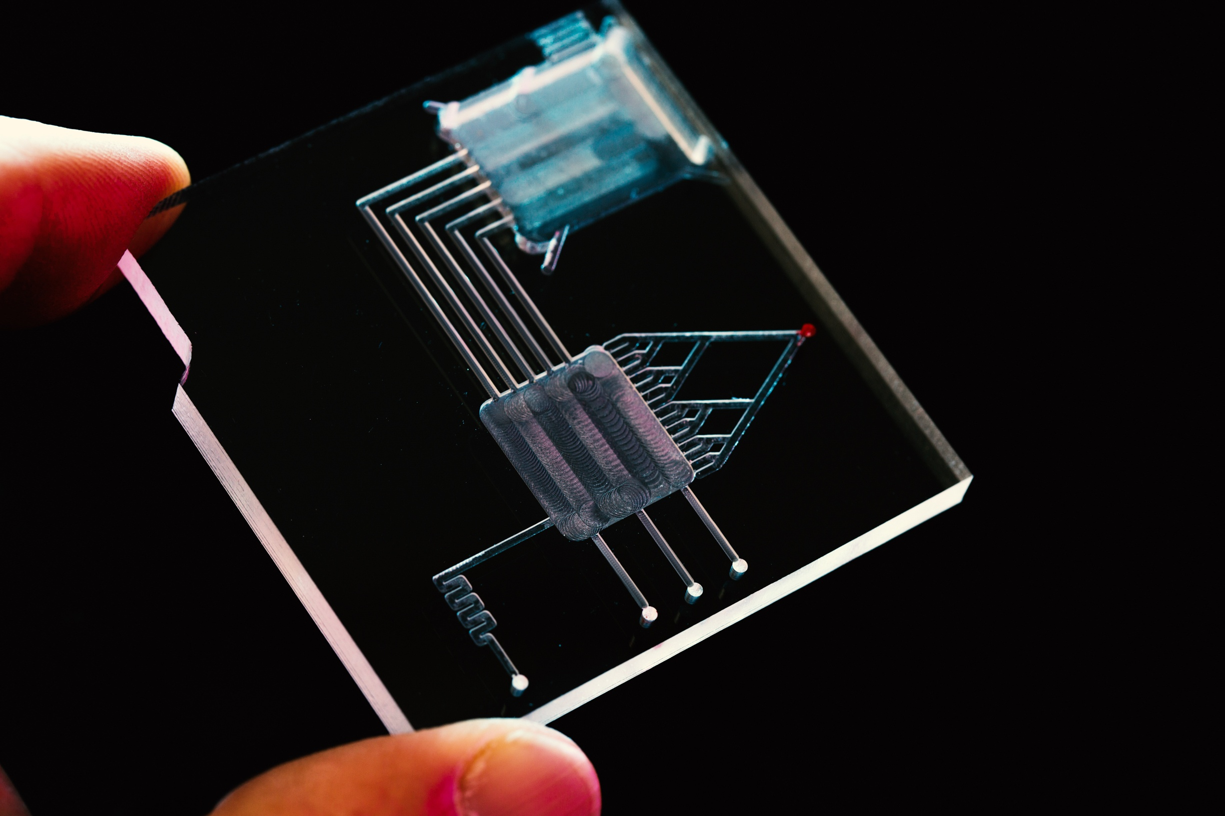 Organ-on-a-Chip: The Future of Improved Drug Discovery?