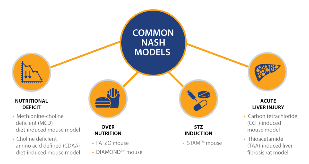 Preclinical Research Models of NAFLD/NASH