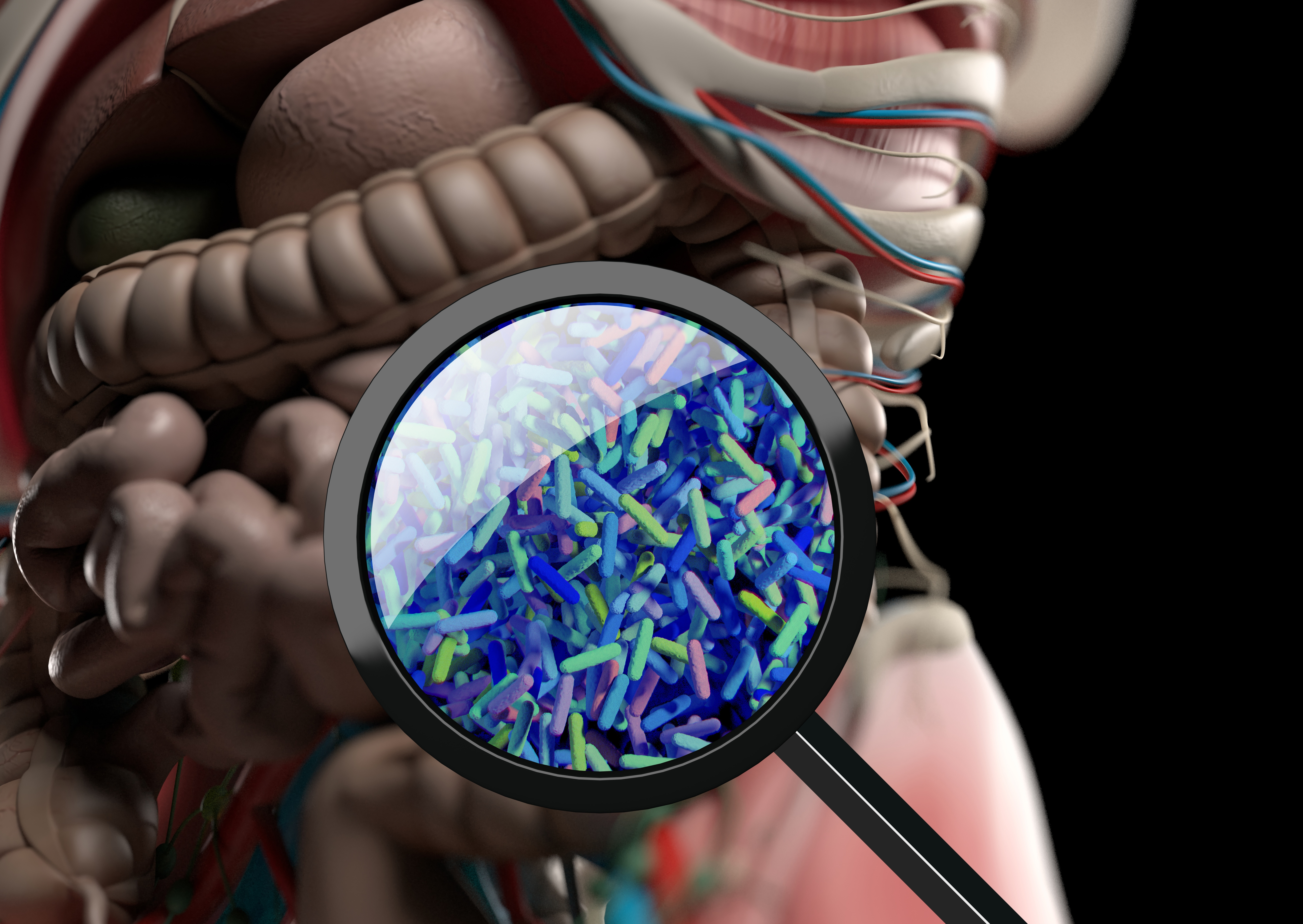 The Role of Gut Microbiota and Implications for IBD
