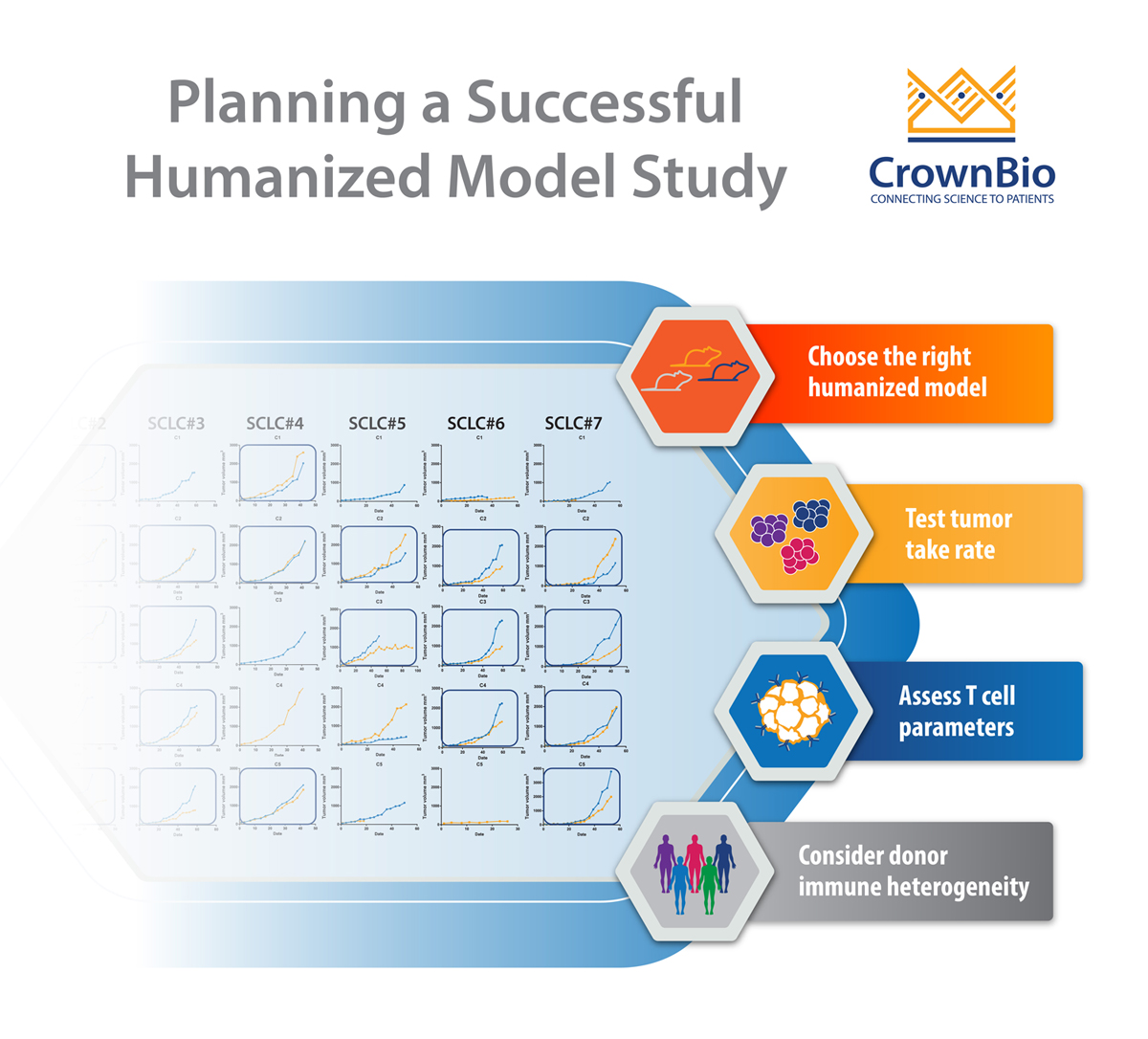 Designing HSC Humanized Model Efficacy Studies