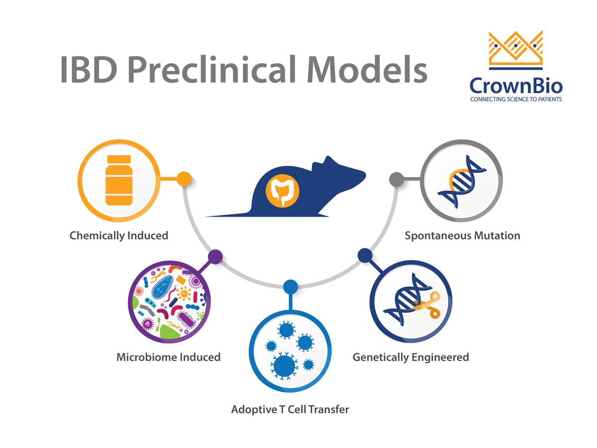 Mouse Models of Inflammatory Bowel Disease