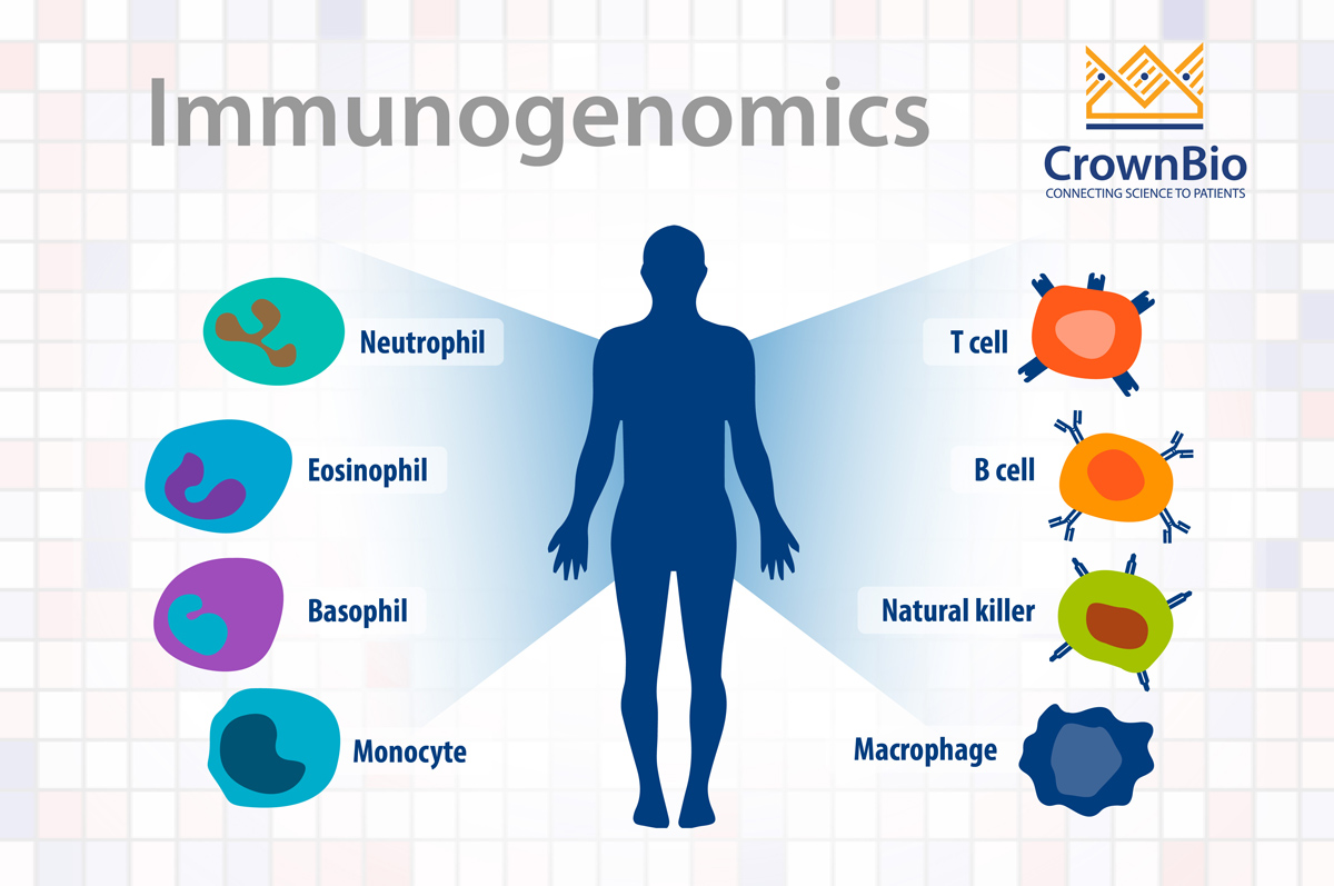 Immunogenomics in Oncology Drug Development