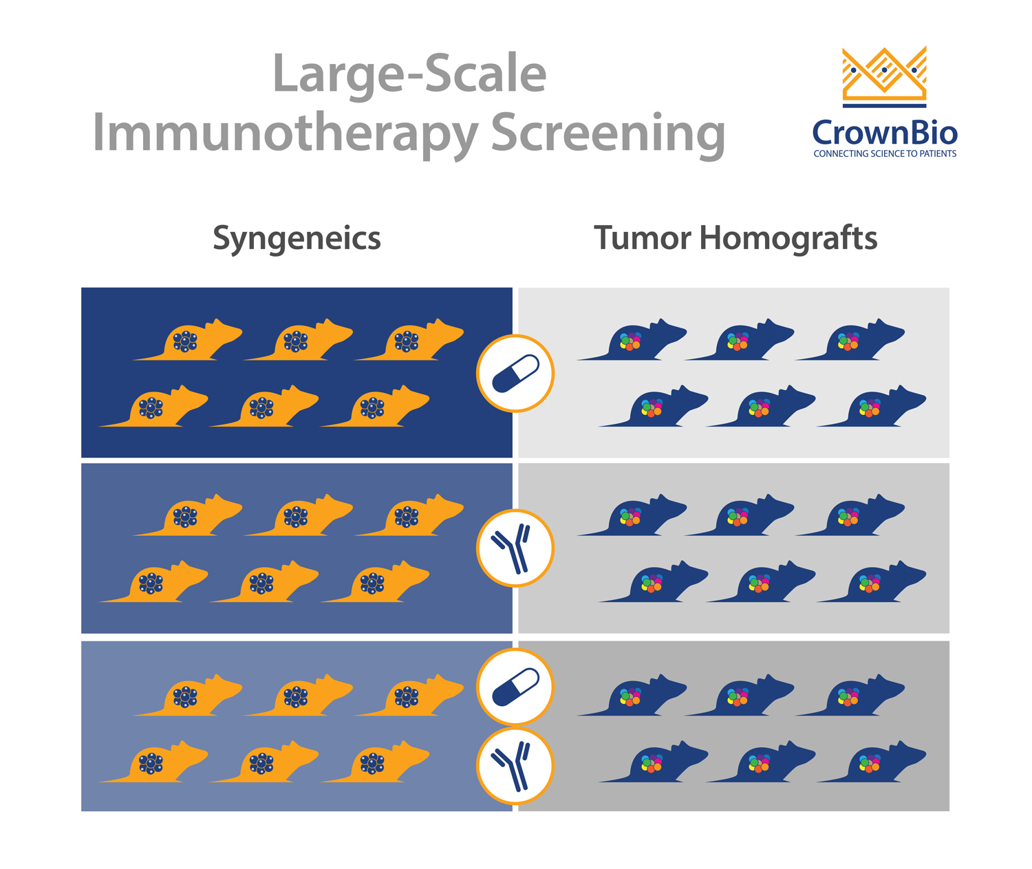 Large-Scale Immunotherapy Screening: How and Why?