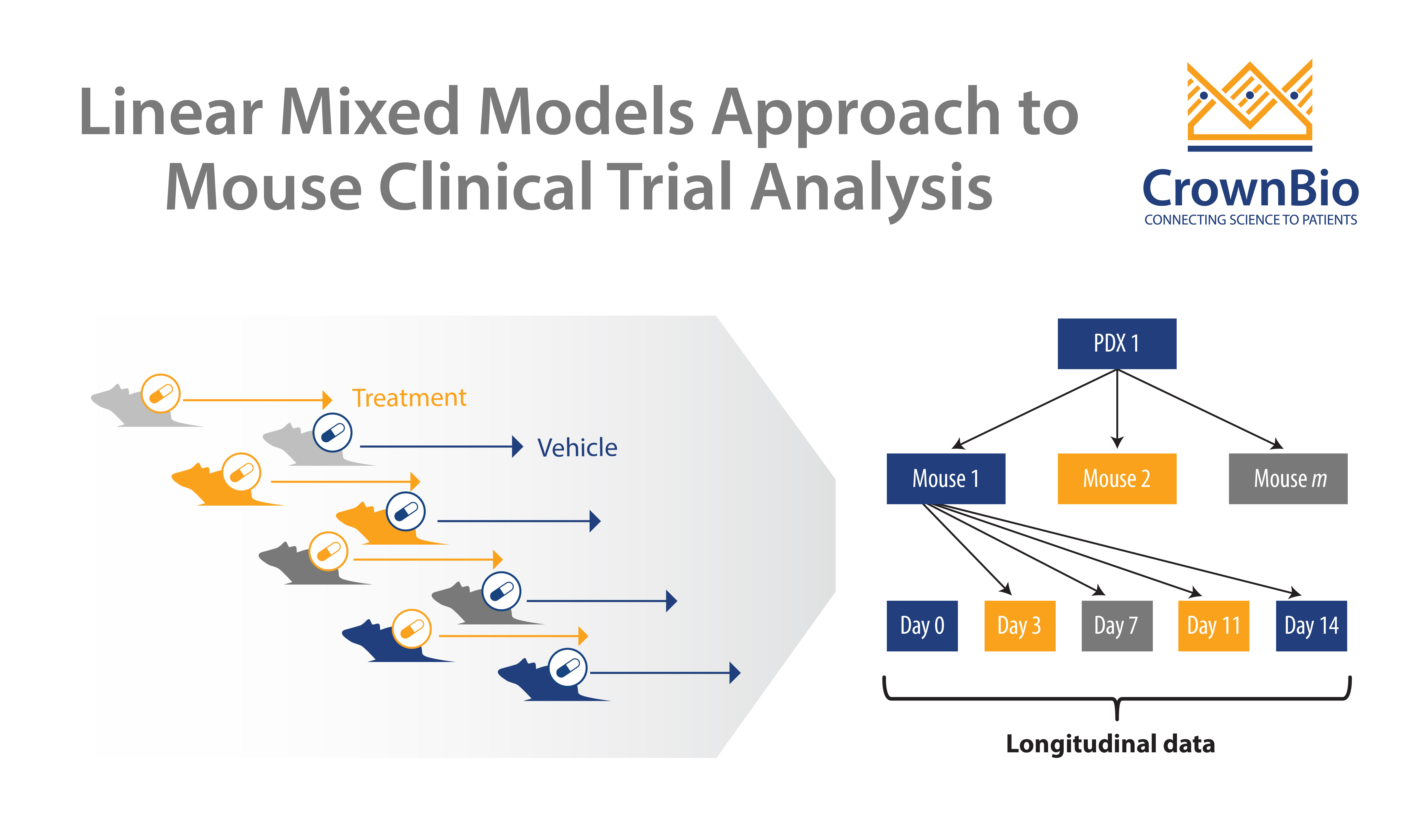 Mouse Clinical Trial Analysis