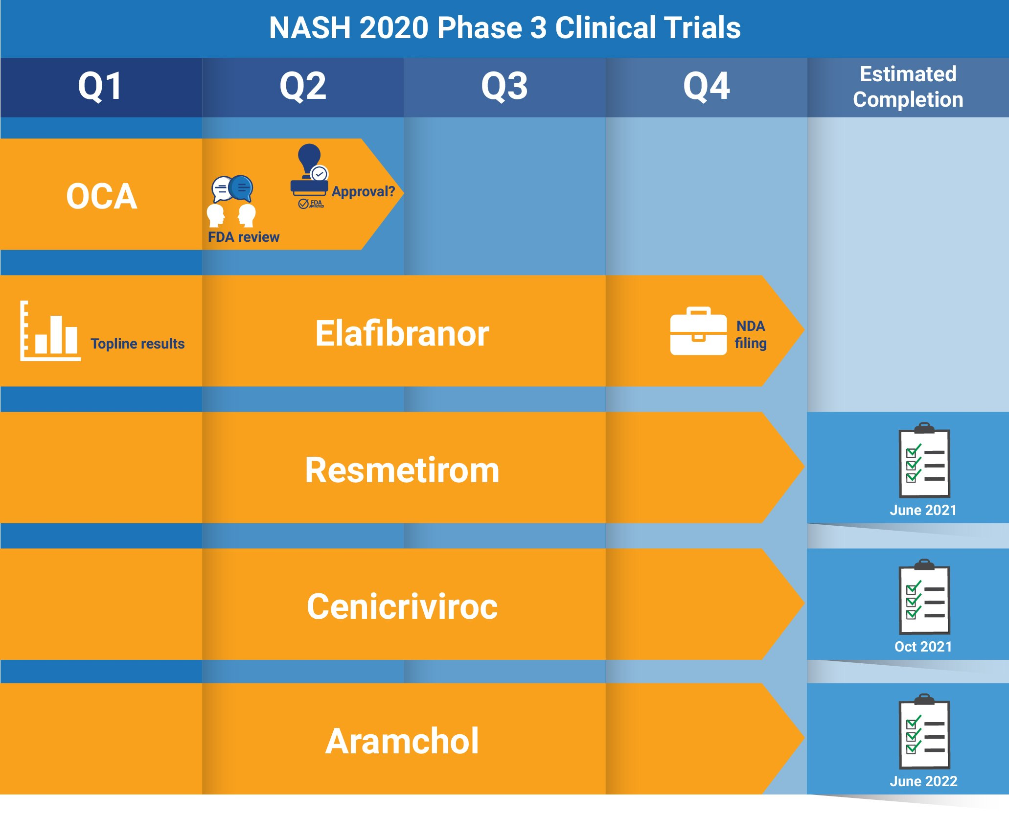 NASH Clinical Update: What to Expect in 2020