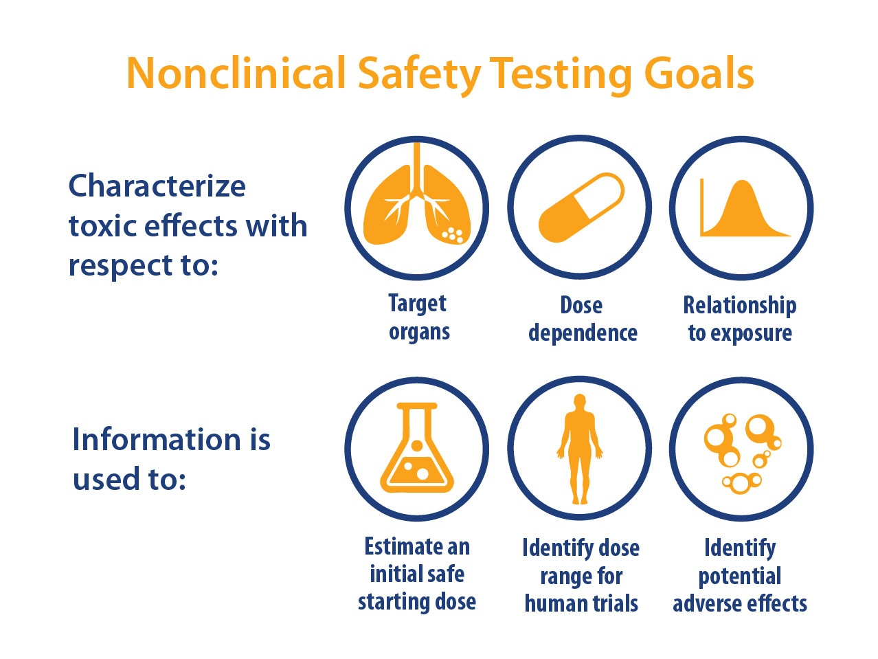 How to Optimize your Non GLP Toxicology Studies