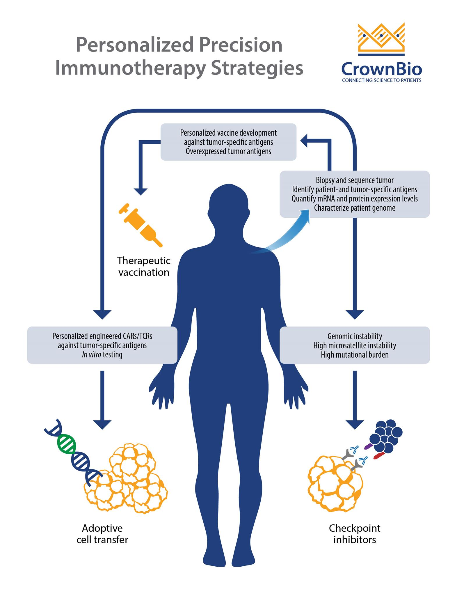 personalized precision immunotherapy strategies, therapeutic vaccination, car-t cell therapy, immune checkpoint inhibitors, adoptive cell transfer