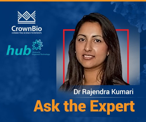 Ask the Expert: Successfully Developing PDX-Derived Organoid (PDXO) Models