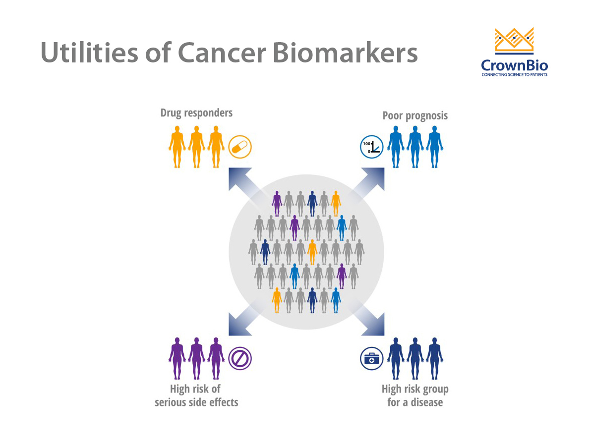 Cancer Biomarkers: Improving Detection and Treatment