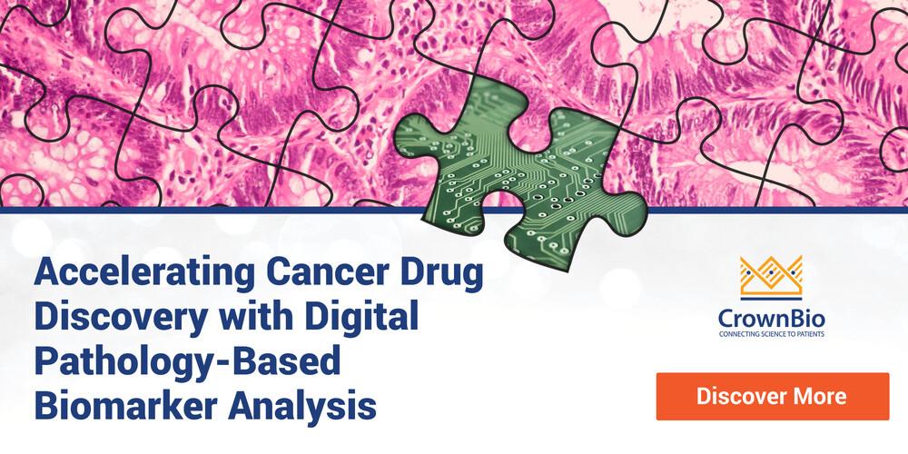 Accelerating Cancer Drug Discovery with Digital Pathology-Based Biomarker Analysis