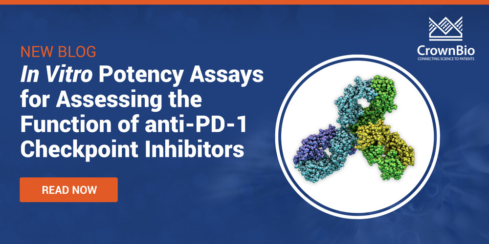 In Vitro Potency Assays for Assessing the Function of anti-PD-1 Checkpoint Inhibitors